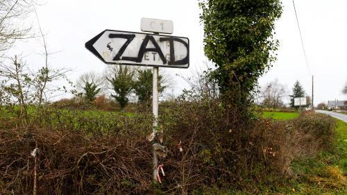 VIDEO. Notre-Dame-des-Landes : quels scénarios pour l'évacuation des zadistes ?