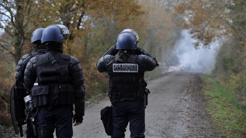 """""""C'est une guérilla rurale"""" : comment les forces de l'ordre se préparent à évacuer la ZAD de Notre-Dame-des-Landes"""