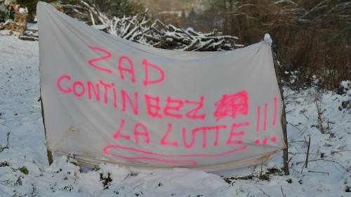 Entre espoir et inquiétude, les autres ZAD de France réagissent à l'abandon du projet de Notre-Dame-des-Landes