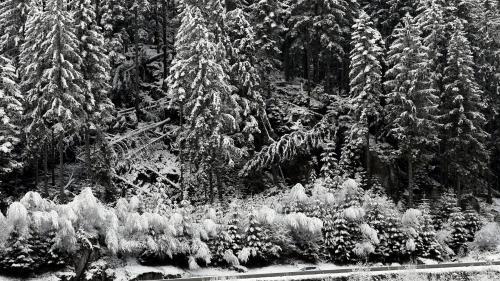 """Coup de froid sur la France : """"Des températures sous les moyennes de saison, avec des gelées généralisées"""" à prévoir"""