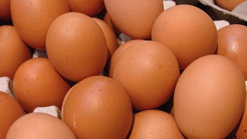 JO d'hiver 2018 : l'équipe norvégienne se fait livrer 15 000 œufs par erreur