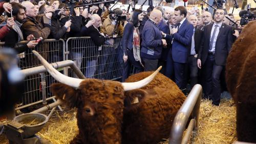 Deux tiers des Français ne font pas confiance à Emmanuel Macron pour défendre l'agriculture, selon un sondage