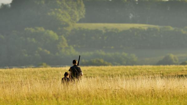 ENQUETE FRANCEINFO. Comment Emmanuel Macron s'appuie sur les chasseurs pour s'enraciner dans les campagnes