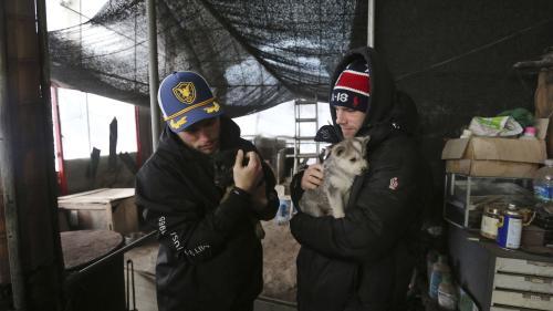 Le skieur Gus Kenworthy et son compagnon dénoncent les élevages de chiens destinés à l'alimentation en Corée du Sud
