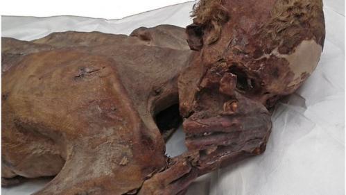 Taureau, mouton... Les plus vieux tatouages du monde découverts sur des momies égyptiennes