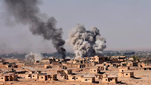 Une jihadiste française interpellée à son retour de Syrie avec cinq enfants