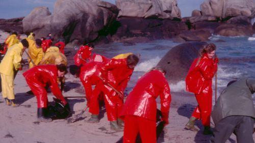 """""""Amoco Cadiz"""" : 40 ans après, des témoins racontent l'une des pires marées noires de l'histoire"""