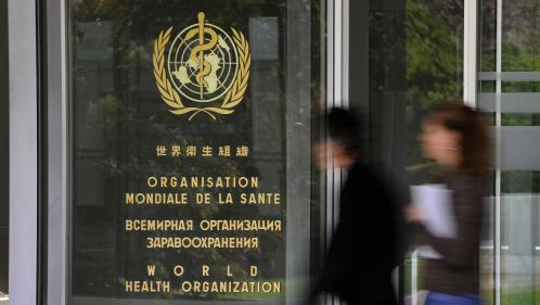 """L'OMS estime que la """"Maladie X"""" pourrait être le prochain danger mondial"""