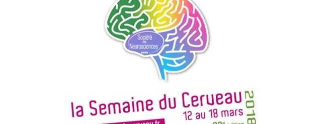 Une semaine pour mieux connaître... votre cerveau !