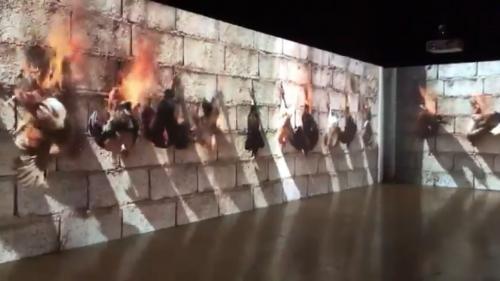 Lyon : le musée d'art contemporain dans lequel était montré une vidéo de poulets brûlés vifs retire l'œuvre après la polémique