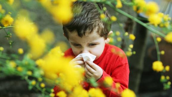 Le diagnostic se fait trop tard — Allergies chez l'enfant