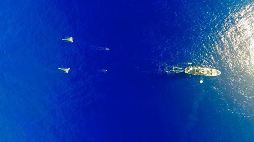 La décharge flottante du Pacifique fait trois fois la taille de la France