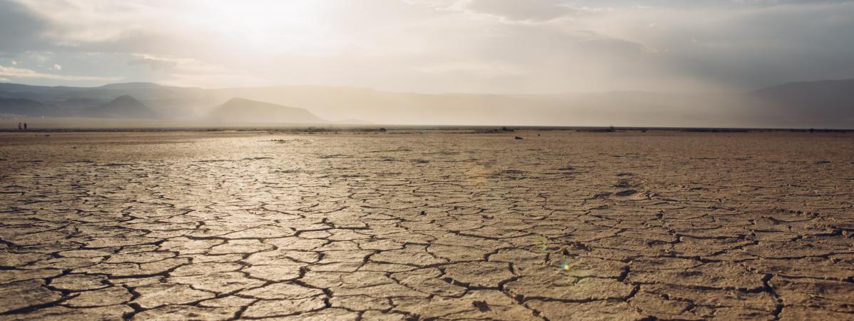 Des experts publient le 26 mars 2018 la première étude mondiale jamais réalisée sur la détérioration des sols de la planète.
