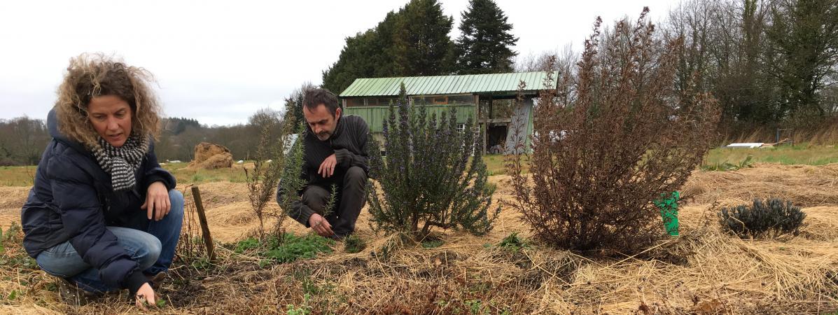 Virginie Philippe et Xavier Richard sur leur exploitation agricole, le 28 mars 2018, dans la ZAD de Notre-Dame-des-Landes (Loire-Atlantique).
