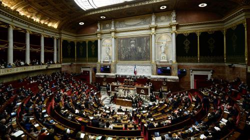 INFOGRAPHIE. A quoi ressemblerait l'Assemblée nationale après la réforme des institutions?