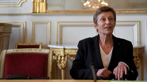 """DIRECT. Notre-Dame-des-Landes : """"J'appelle chacun à la raison"""", lance la préfète de Loire-Atlantique après des violences"""