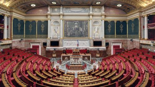 Emmanuel Macron avait-il le droit de frapper la Syrie sans consulter le Parlement ?