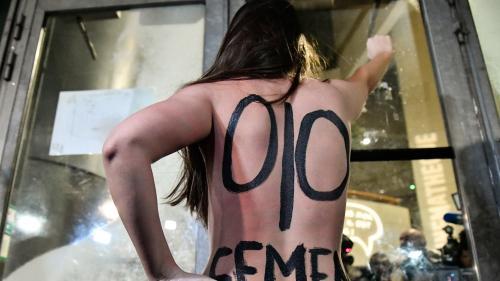 Des seins nus aux livres politiques... Comment les Femen veulent faire peau neuve