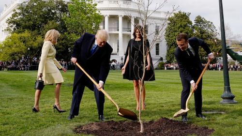 Les internautes détournent à la pelle la séquence jardinage de Trump et Macron