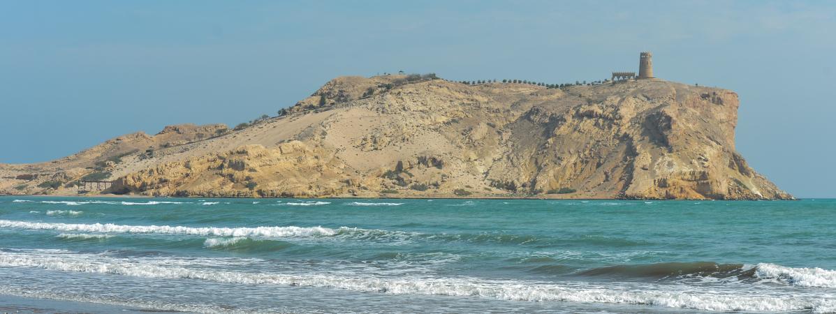 «L'océan suffoque» : des chercheurs trouvent une immense «zone morte» dépourvue d'oxygène dans le golfe d'Oman