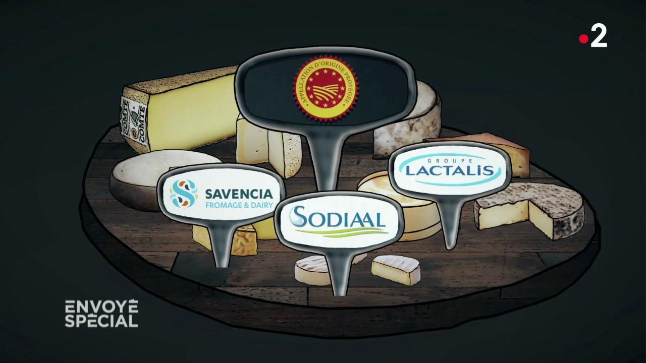 VIDEO. AOP : des fromages à la chaîne