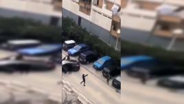 Marseille : quand la violence devient banale