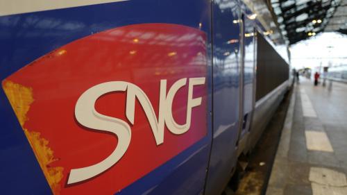 Près de deux mois après le début de la grève, 6 Français sur 10 jugent le mouvement des cheminots injustifié, selon un sondage