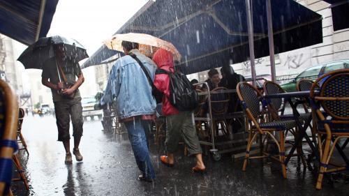 Pourquoi sommes nous capable de sentir l'odeur de la pluie ?