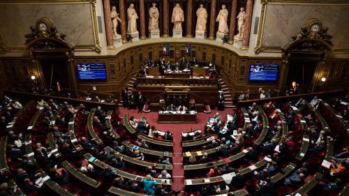 Politique : la loi asile-immigration au Sénat