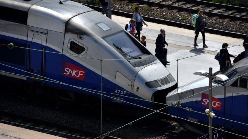 Grève à la SNCF : un dispositif spécial pour acheminer les candidats au baccalauréat vers les centres d'examen