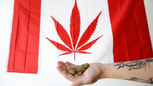 Au Canada, le cannabis sera légal à partir de mi-octobre