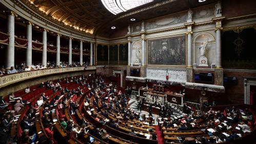 """Des parlementaires proposent d'adosser à la Constitution une """"Charte du numérique"""""""