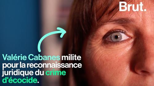 """VIDEO. Cette juriste milite pour faire reconnaître le crime """"d'écocide"""""""