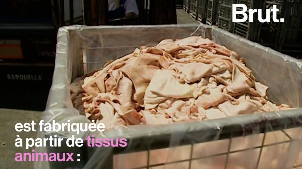 VIDEO. Os broyés, peau de porc... Voilà ce que cache la gélatine qu'on trouve dans les bonbons Nouvel Ordre Mondial, Nouvel Ordre Mondial Actualit�, Nouvel Ordre Mondial illuminati