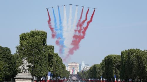 VIDEO. La Patrouille de France s'est emmêlée les pinceaux dans les couleurs du drapeau