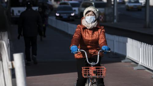 """Masques antipollution : """"Les données ne démontrent pas un bénéfice pour la santé"""", selon l'Anses"""