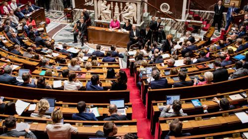 Affaire Benalla : l'Assemblée nationale reporte à la rentrée l'examen de la révision constitutionnelle