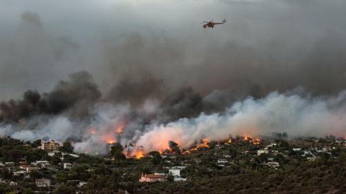 DIRECT. De violents incendies font au moins 50 morts en Grèce