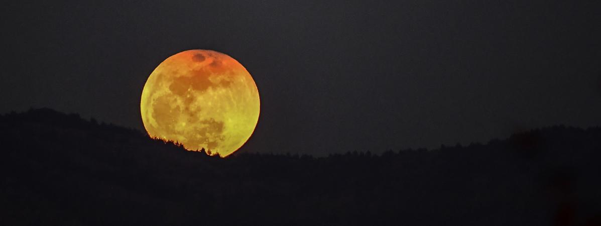 Super Lune : pourquoi la lune du 31 janvier est une lune bleue de sang ? 15523031
