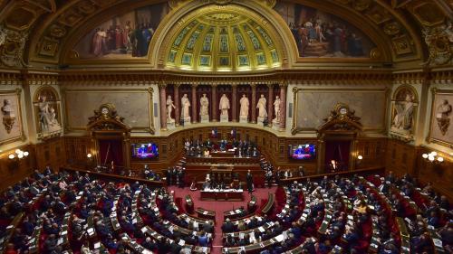 """Le Sénat rejette les propositions de loi sur les """"fake news"""" sans même discuter des textes"""