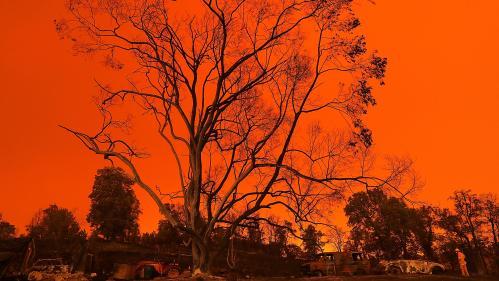 EN IMAGES. Scènes de désolation, paysages lunaires... Aux États-Unis, la Californie en proie aux flammes
