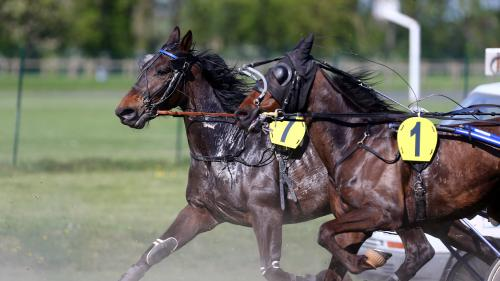 Un célèbre propriétaire de chevaux de course visé par une plainte pour agression sexuelle sur mineur