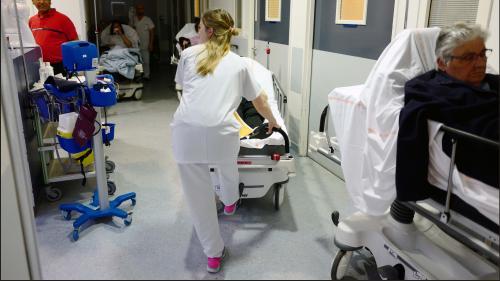 """Canicule : """"Les hôpitaux font face grâce à la mobilisation des professionnels"""", estime la Fédération hospitalière de France"""