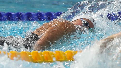 DIRECT. Championnats européens : la France décroche l'or sur le relais 4x100 m nage libre mixte. Regardez les épreuves avec francetv sport