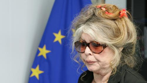 "Selon Brigitte Bardot, Nicolas Hulot est ""un trouillard"" qui ""ne sert à rien"""