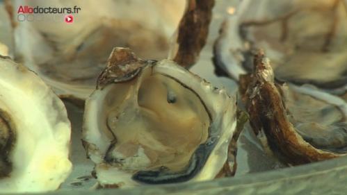 Morbihan : le ramassage de coquillages interdit dans plusieurs zones