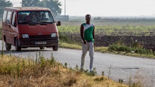 Accidents de la route, réseaux opaques... Le calvaire des migrants exploités pour la cueillette de tomates dans le sud de l'Italie