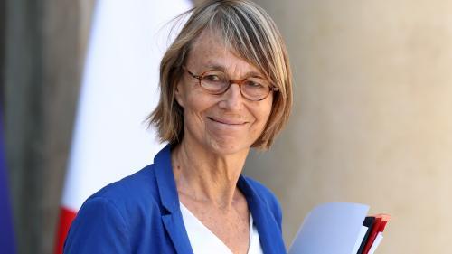 Françoise Nyssen de nouveau épinglée pour des travaux non déclarés à Paris