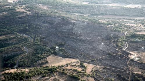 nouvel ordre mondial | Lot : une centaine d'hectares de forêt ravagés par un incendie depuis samedi après-midi, les pompiers toujours sur place