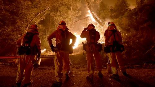 """""""Nous vivons un cataclysme planétaire"""" : 200 personnalités, dont Alain Delon et Kristen Stewart, lancent un appel pour sauver la planète"""
